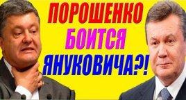 Киевские путчисты испугались показаний последнего легитимного президента Украины