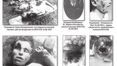 """Photo of Украинские нацисты пикетировали фотовыставку """"Волынская резня — польские и еврейские жертвы ОУН-УПА"""""""