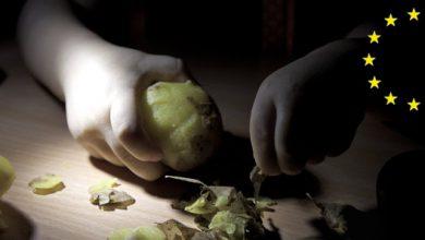 Photo of Прибалтийское экономическое чудо: голодающая провинция