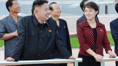 """Photo of """"Генератор"""" нелепых уток в отношении Северной Кореи"""