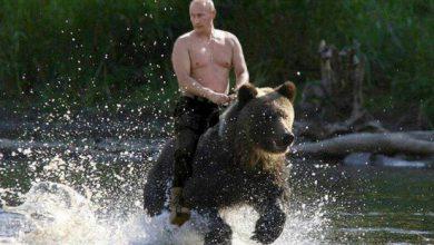 Photo of Владимир Путин может выжать кровь из камня