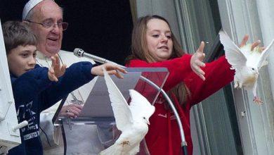 Photo of Путин купил чайку и ворона, чтобы те обломали акцию папы римского?