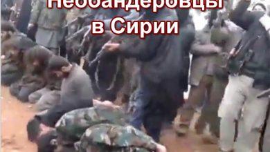 Photo of Сирийские бандеровцы расстреляли армян