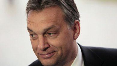Photo of Украинские венгры имеют право на двойное гражданство и автономию