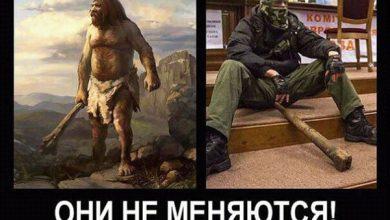 Photo of Прошли тысячи лет цивилизации, но укропитеки их не заметили