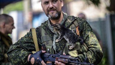 Photo of Ополченцы призвали солдат украинской армии продолжать уходить в Россию