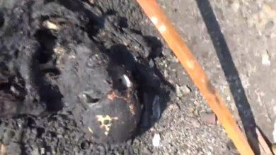 Photo of Страшные кадры разбитой колонны Львовской карательной бригады