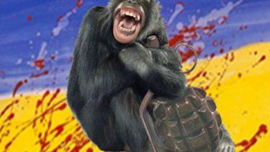 Photo of Ядерный бзик примата в каске