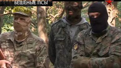 Photo of Бешенные псы киевской хунты