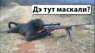 Photo of Культура Украины благодаря бандерлогам впала в примитивную шароварщину
