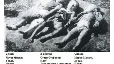 Photo of Порошенко поднимает дух карателей примером преступлений банд УПА