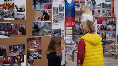 Photo of Греки не разрешили фотовыставку, прославляющую украинских карателей