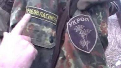 Photo of В Красном Партизане обнаружили «укропов рабовладельцев»