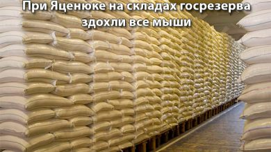 Photo of Яценюк разворовал всё, опустошены даже склады госрезерва