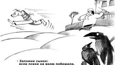Photo of У свидомитов весеннее обострение