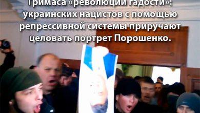 Photo of Украинских нацистов приучают любить нового «вождя»