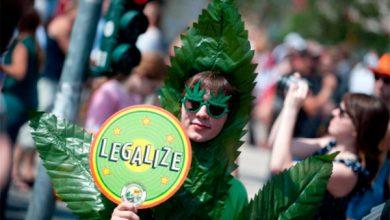 Photo of Бремя американской марионетки: парламент Грузии легализует марихуану