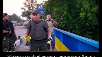 Photo of Жёлто-голубая полоса Украины приводит к тупости