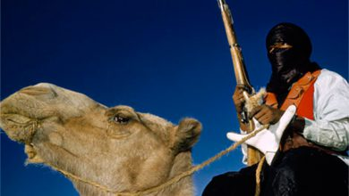 Photo of Киевских карателей на Донбассе пополнят туарегами на верблюдах?..