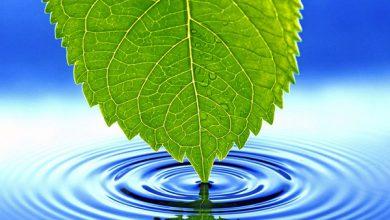 Photo of Чистая питьевая вода – энергия и здоровье