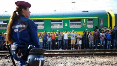 Photo of Европа гибнет на наших глазах