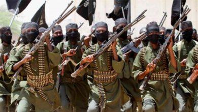 Photo of США защищают ИГИЛ в ООН?