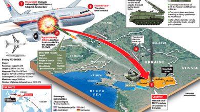 Photo of Вдруг! Нидерланды призвали Россию участвовать в уголовном расследовании крушения MH-17
