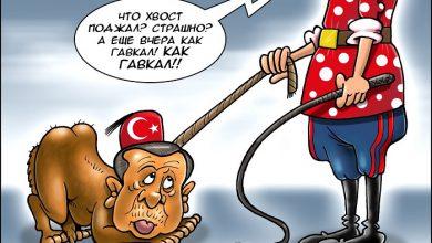 Photo of Россия будет отказываться от всего турецкого