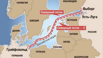 Photo of «Северный поток»: Лишить глистов подкормки!