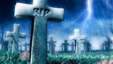 Photo of Экономический потенциал кладбища