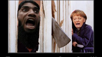 Photo of Не мешайте Меркель падать вниз