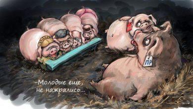 Photo of В Украине начинается новый этап дерибана