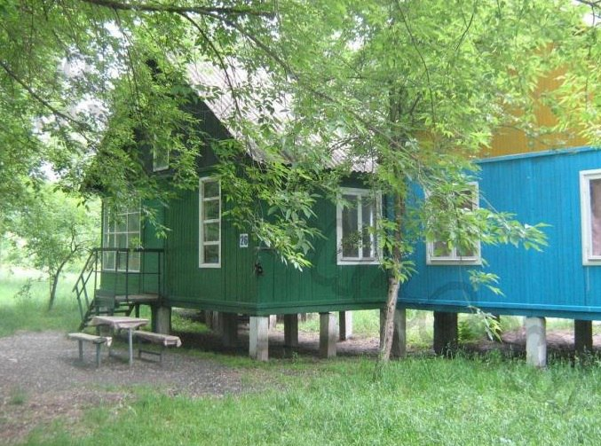 Дешево и сердито: пять бюджетных баз отдыха в Киеве