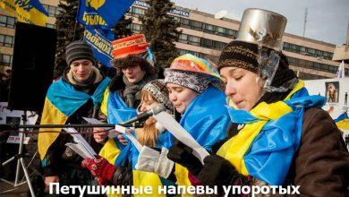 Photo of Вывод ВКС РФ из Сирии: «свидомым» нацистам пора начинать шить российские флаги