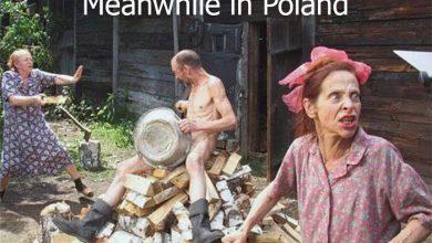Photo of Польское трубадурство взбесило дипломатов США и ЕС