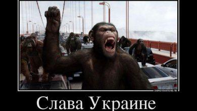 Photo of Украина готова вляпаться в новый геополитический скандал