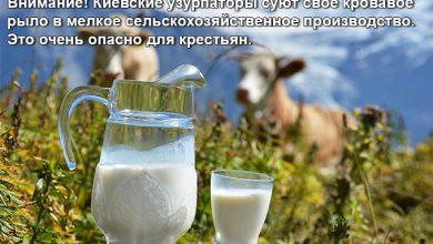 Photo of Украинские крестьяне, готовьтесь к худшему: Вступаем «в Европу»