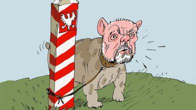 Photo of Польский капкан для бумажного тигра НАТО