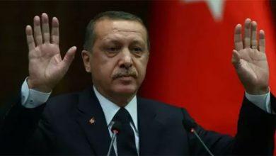 Photo of Эрдоган готов сотрудничать с Россией и Ираном