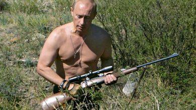 Photo of Война Путина с глобальной наркоторговлей разозлила Запад