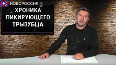 Photo of Культ безнаказанности: хроника пикирующего трызубца №22