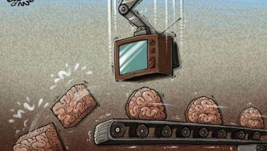 Photo of Обучение свободе: как это происходит на самом деле, — А.Бабицкий