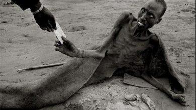 Photo of Киевские узурпаторы устраивают украинцам искусственный голод?