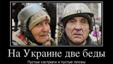 Photo of Загон непуганых лохов