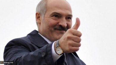 Photo of Лукашенко: В русском языке — душа белорусского человека
