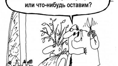 Photo of Запах власти