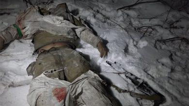 Photo of Киевские брехуны сорвали выдачу убитых под Дебальцево карателей