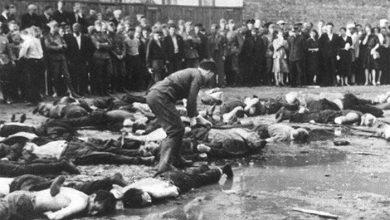 Photo of Автору книги о зверствах литовцев в ходе Великой Отечественной угрожали смертью