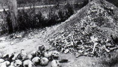 Photo of В Ирландии обнаружили детский концлагерь?