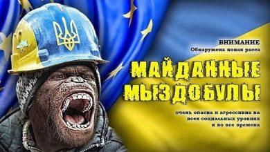 Photo of #МиЗдобули